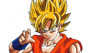 Première Vidéo du Super Saiyan God Super Saiyan (SSGSS)