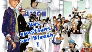 [Sondage] – Ce que veulent vraiment les fans de «Bleach»
