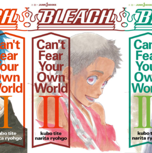 Bleach – Can't Fear Your Own World : Le roman licencié en Amérique du Nord, qu'en est-il pour la France ?