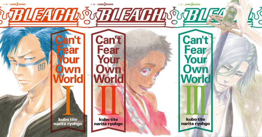 Bleach – Can't Fear Your Own World : Le roman licencié en Amérique du Nord, qu'en est-il pour la France ?