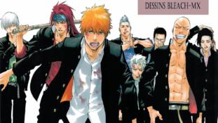 Concours de Dessins Bleach-Mx XIIIe Édition : C'est à vous de Voter !!