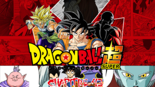 Dragon Ball Super Chapitre Scan 043 VF