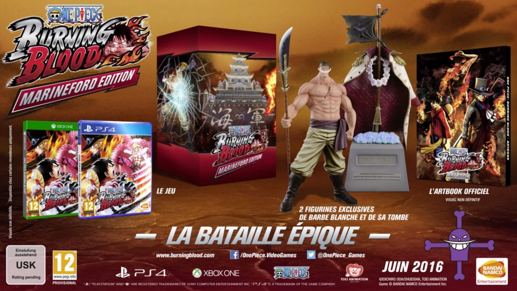 One Piece Burning Blood Collector Edition