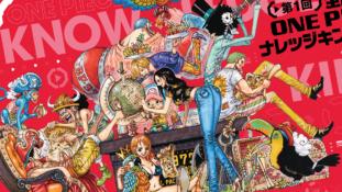 One Piece : Roman Ace, Magazine, fréquence des bains des Mugiwara