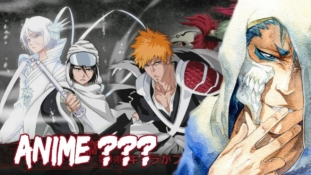 ANIME BLEACH: QU'EN EST-IL DE L'ARC FINAL ?