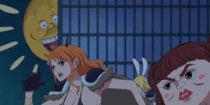 Chapitre One Piece 983 Premières images
