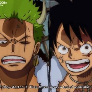 Chapitre One Piece 981 VUS